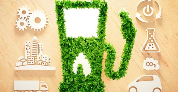 Biofuel Generation in India – Complete Analysis