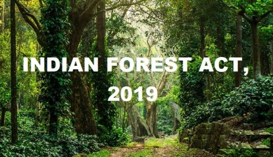 Draft Indian Forest Act 2019: Dehumanising ForestsPREMIUM