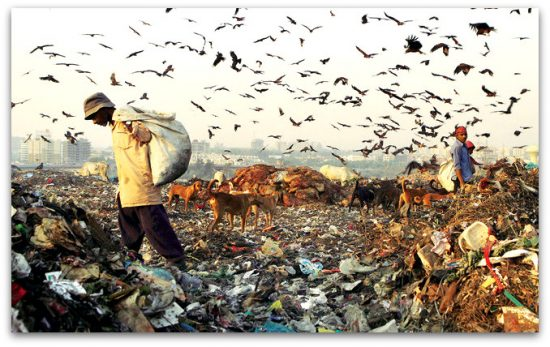Solid Waste Management in India - Issues & Responses