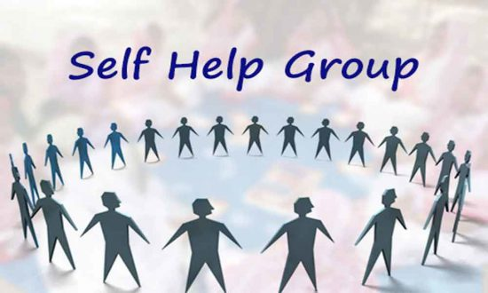 Self help group thesis