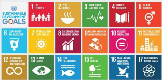 Sustainable Development Goals (SDGs) – India's Readiness & ChallengesPREMIUM