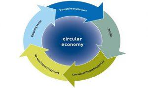 Circular Economy: Definition, Importance and Aspects