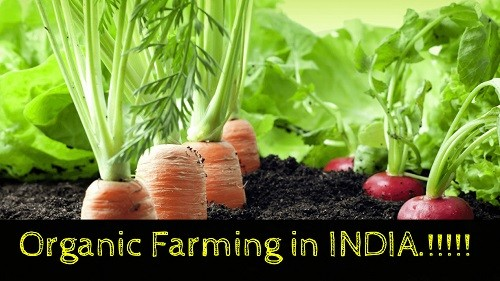 Organic Farming in India – Features, Benefits, Challenges, InitiativesPREMIUM