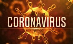 Novel Coronavirus (COVID-19): All You Need to Know