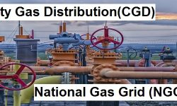 City Gas Distribution (CGD) & National Gas Grid (NGG) - Significance & Challenges