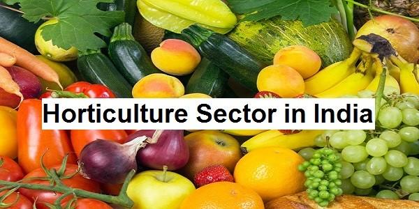 Horticulture Sector in India – Current Status, Challenges, InitiativesPREMIUM