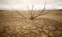 [Disaster Series] Drought in India & its Management