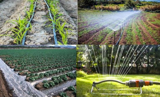 Different Types of Irrigation & Irrigation Systems