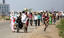 Migration during the pandemic - Reasons, Impacts, Solutions