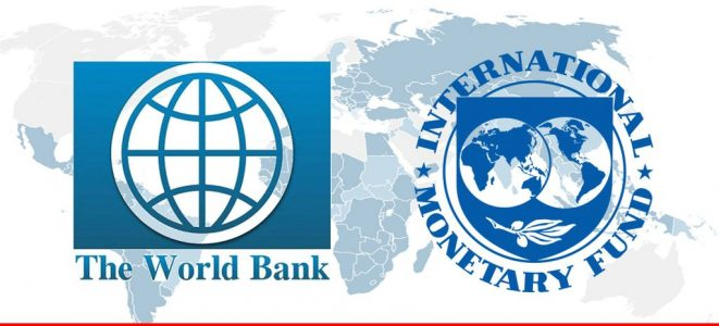 role of international financial institutions during covid-19 pandemic