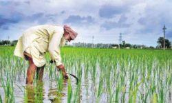Farm Bills, 2020 - Provisions, Concerns, Way Forward