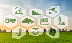Digital Agriculture - All You Need to Know