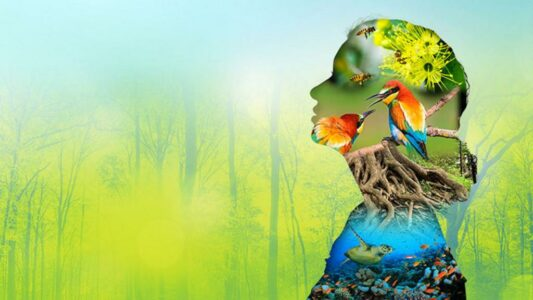 national mission on biodiiversity and human wellbeing