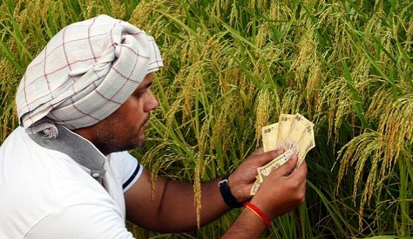 [Editorial] Rural Economy in Pandemic Times